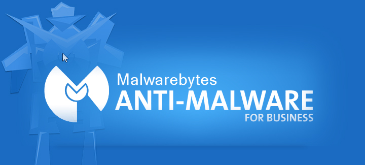 malware protection and security solutions for business