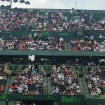 Miami Open Semifinal 2016 Novak Djokovic vs Davod Goffin